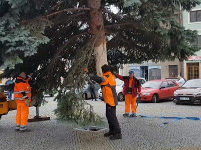 Jak se staví vánoční strom